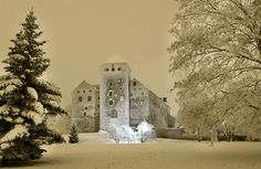 Åbo Castle in winter.Merry Christmas from Finland! Turku Finland, Castle Project, Anno Domini, City Vibe, Helsinki, Scandinavian Style, Mount Rushmore, Travel Destinations, Journey