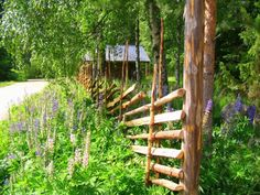 Fences, Finland. Love this look, could adapt to just about anywhere :)