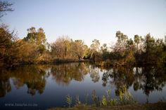 Vaal River Cape Town, Rivers, Mountains, Water, Wedding, Travel, Outdoor, Gripe Water, Casamento