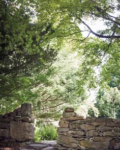 An opening in the stone wall leads to the evergreen garden.