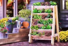 You will love these amazing Raised Herb Garden Planter Ideas and there is something for everyone. Watch the video tutorial too. Vertical Garden Planters, Herb Garden Planter, Herb Planters, Vertical Gardens, Jardim Vertical Diy, Raised Herb Garden, Culture D'herbes, Diy Wall Planter, Planter Ideas