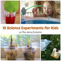 Science Experiments for Kids | The Jenny Evolution