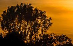 November OC sunset by Hugh Mobley on 500px