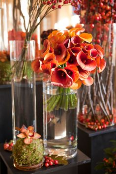 Wedding and Floral Event Styling from Planet Flowers: Hopetoun House - Corporate Event: