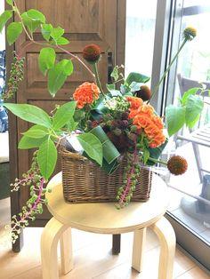 7月 実物でカゴアレンジメント Flower Arrangements, Flowers, Plants, Floral Arrangements, Plant, Royal Icing Flowers, Flower, Florals, Floral