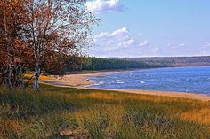 Fall colors line the sandy shore of Lake Superior.