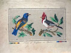 Antique Berlin Hand Painted Wool Work Embroidery Tapestry Pattern Birds Design | eBay