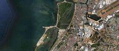 Freedom Island