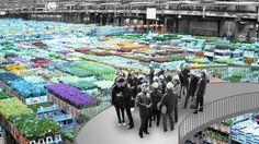 Arquitectos  OMA  han propuesto las casas de subastas de flores, teleféricos y un teatro al aire libre como parte de la oferta central de Holanda para albergar la  Expo Mundial de Horticultura  en 2022.