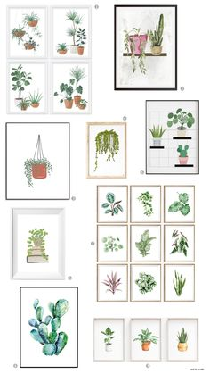 Hang It - Charming Watercolour Prints of Potted Plants