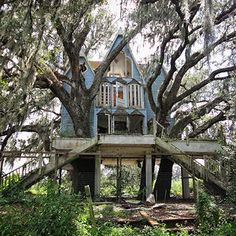 Abandoned Victorian Treehouse, South East Florida, USA | Bored Panda