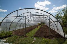 Terenul după frezare, pregătit pentru plantarea răsadurilor Solar, Plant, Lawn And Garden