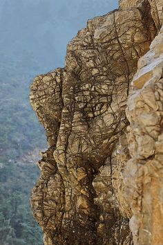 ✯ Elephants head Rock Face in the Himalayas - India