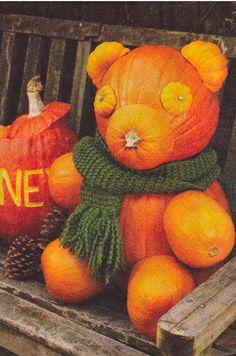 honey bear pumpkin.