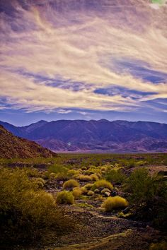 Death Valley  www.cherylddobbinsphotography.com