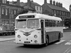 Leyland Tiger Cub PSUC1/1 Willowbrook UK-spec (DP41F) '1961 Blue Bus, Routemaster, Tiger Cub, London Transport, Busses, Coaches, Agriculture, Cubs, Transportation