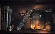 Still Life Photography to to Skyrocket Your Creativity