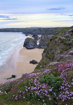 Late Afternoon Pinks is part of Cornwall england - Here is a colourful display of sea thrift around the cliffs of Bedruthan Steps in Cornwall The sky also had a hint of pink later that day Thank you for looking Lofoten, Cornwall England, Yorkshire England, Yorkshire Dales, Landscape Photography, Nature Photography, Cornwall Beaches, Quelques Photos, English Countryside