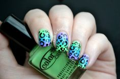 Nails by Kayla Shevonne: Peacock Gradient + Leopard Print Mani  love the pastel gradients. the black really helps it pop.