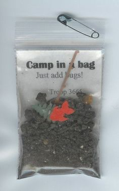 Scout Camping Swap Ideas | Model for camp SWAPS that we made yesterday. I changed ours to read ...