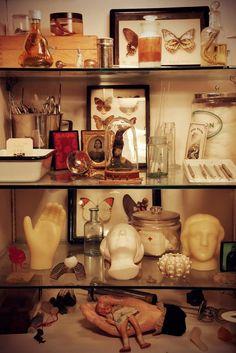 Cabinet of curiosity....origin unknown