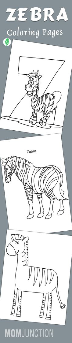 top 20 free printable zebra coloring pages online