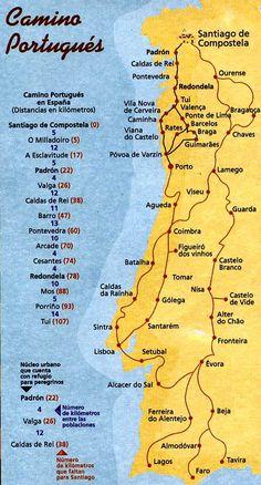 compostelle-chemin-portugais