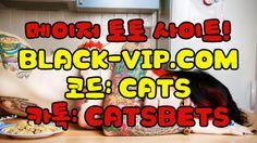 축구토토스페셜배당ぁぁ BLACK-VIP.COM 코드 : CATS 축구토토스페셜 축구토토스페셜배당ぁぁ BLACK-VIP.COM 코드 : CATS 축구토토스페셜 축구토토스페셜배당ぁぁ BLACK-VIP.COM 코드 : CATS 축구토토스페셜 축구토토스페셜배당ぁぁ BLACK-VIP.COM 코드 : CATS 축구토토스페셜 축구토토스페셜배당ぁぁ BLACK-VIP.COM 코드 : CATS 축구토토스페셜 축구토토스페셜배당ぁぁ BLACK-VIP.COM 코드 : CATS 축구토토스페셜