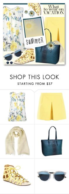 """Summer Vacation Wear"" by brendariley-1 ❤ liked on Polyvore featuring Dorothy Perkins, Boutique Moschino, FABIANA FILIPPI, Dasein, Chase & Chloe and Christian Dior"