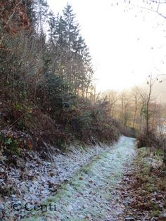 Centi bastelt: Frosthauch