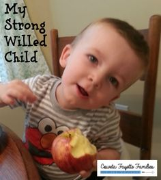 Strong Willed child parenting advice needed