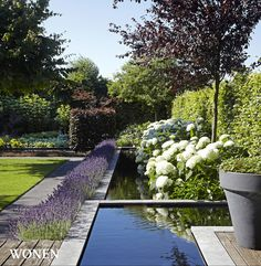 Stylish Living: the magazine for warm contemporary living - Design: Groengroep - Photography: Sarah Van Hove, Dorien Ceulemans, Jonah Samyn - water bed - Stylish Living: the magazine for warm, contemporary living – Design: Groengroep – Photography: S - Contemporary Garden Design, Landscape Design, Garden Pool, Water Garden, Formal Gardens, Outdoor Gardens, Amazing Gardens, Beautiful Gardens, Micro Garden
