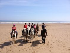 Saltburn Riding School - Beach Rides