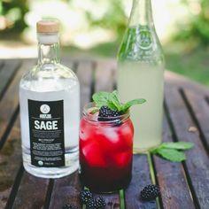 SAGE Blackberry Blush Cocktail