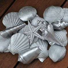 Shells from the beach....what to  do with them spray paint them silver and used as home decor