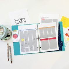 Project Organize Your ENTIRE Life Printables - Everything you need in one place!