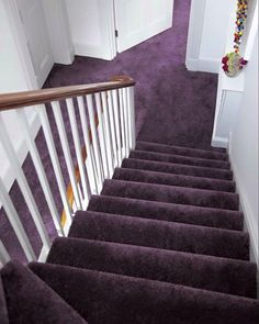 Carpet Runners For Stairs Lowes Key: 5191001667 Carpet Stairs, Red Carpet Runner, Purple Carpet, Bedroom Carpet, Carpet Colors, Carpet, Hotel Carpet, Diy Carpet, Grey Carpet