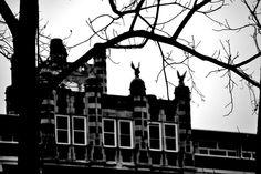 sanatorium by bill marsh