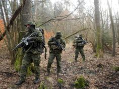 Combat Forest Rats during long-range reconnaissance patrol (LRRP) in Poland's forest. Main comuflage of unform is multicam tropic which perfectly match to Poland enviroment.