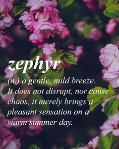 Deemed one of the most beautiful words in the English language due to its euphony rare sighting and letter composition.  Greek origin //ZƐF ƏR// Zephyr: a gentle, mild breeze. It does not disrupt, nor cause chaos, it merely brings a pleasant sensation on a warm summer day.