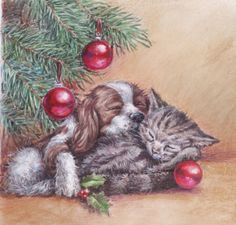 Harrison Ripley - Xmas-Puppy-&-Kitten jpg.jpg