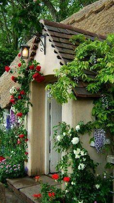 Front of cottage, dooryard flowers.