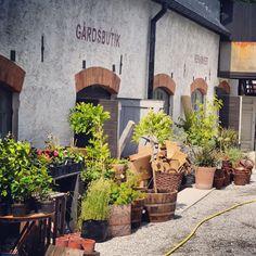 Leva kungslador utanför Visby på Gotland – Gotlandstips.se  #gotland #gotlandstips #sweden #crafts #ecoshopping #gardensupplies #eco # Hippie Love, Swedish House, Beautiful Islands, Design Crafts, Countryside, Sweden, Conference, Wanderlust, Backyard