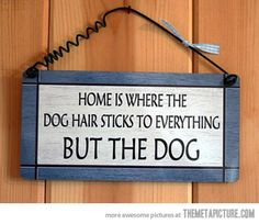 Dog owners will know…