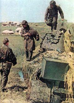 Soviet Prisoners, T-34