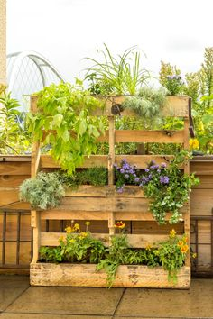 Give new life to salvaged materials by building this DIY pallet planter for the garden. = How to Build a Wood Pallet Planter with Secondhand Stuff - This planter has a rustic look that is enhanced by greenery cascading down it, and it creates a ton of room for planting—perfect for those without much outdoor space. #gardentherapy #DIY #pallets #palletfurniture #palletprojects #gardening