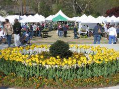 SpringFest Garden Market & Festival | TravelOK.com - Oklahoma's Official Travel & Tourism Site