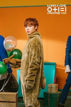 "Wanna One (I Promise You)"" Park Jihoon Wallpaper Jinyoung, Swing, Ha Sungwoon, Kim Jaehwan, I Promise You, Fandom, Guan Lin, Lai Guanlin, Produce 101"