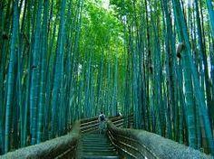 Résultats de recherche d'images pour «beautiful places to visit in the world»