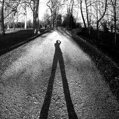 shadow | by Bearseye